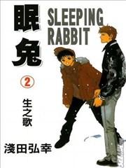 眠兔的封面图